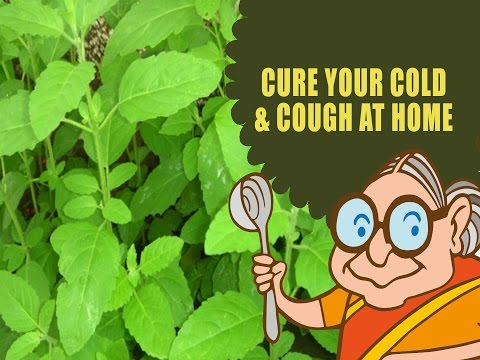 Cough & Cold – Ayurvedic Natural Home Remedies for Cold,Cough & Flue – Tulsi Juice
