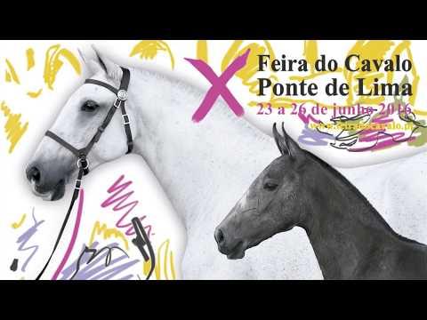 Reportagem da X Feira do Cavalo de Ponte de Lima