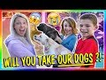 Download Lagu WILL YOU TAKE OUR DOGS?!?!   We Are The Davises Mp3 Free