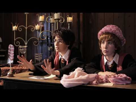 Harry Potter and The Order of Umbridge by The Hillywood Show