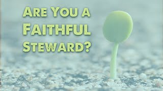 Are You a Faithful Steward?