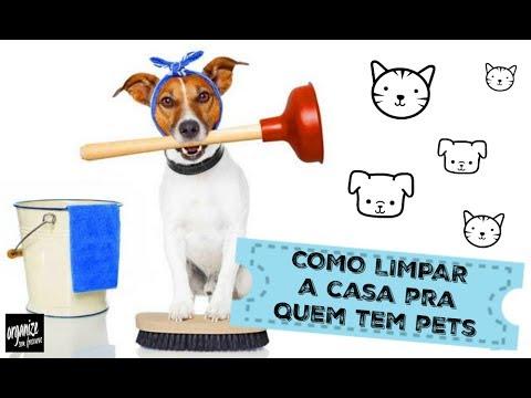 ESPECIAL: COMO LIMPAR A CASA PRA QUEM TEM PETS (CACHORRO OU GATO)   Organize sem Frescuras!