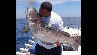 Pescaria em Alto Mar - NAMORADO 26 KG - Rato & cia