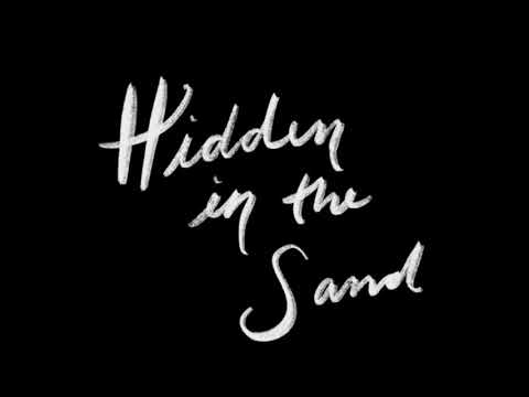 Hidden in the sand | HP Animatic