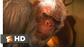 Nonton Goosebumps  1 10  Movie Clip   The Abominable Snowman Of Pasadena  2015  Hd Film Subtitle Indonesia Streaming Movie Download