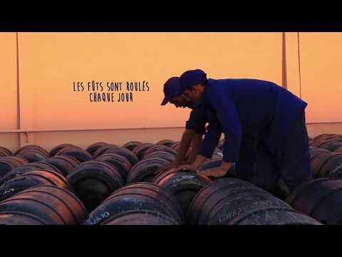 Le secret de fabrication des olives noires à la Grecque / La préparation