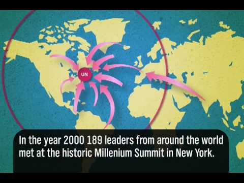 Millennium - Millenium Development Goals for 2015 In the year 2000, 189 leaders from around the world met at the historic Millenium Summit in New York. According to the t...