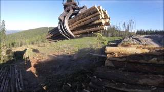 Video John Deere 2454D Loading a logging truck MP3, 3GP, MP4, WEBM, AVI, FLV November 2018