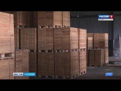 Журналистам впервые показали кернохранилище - DomaVideo.Ru