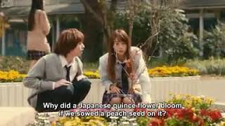 Nonton [PEACH GIRL] I need a Kairi in my life 😍 Film Subtitle Indonesia Streaming Movie Download