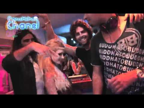 Paris Hilton - Platinum Blonde (MUSIC VIDEO) 2011