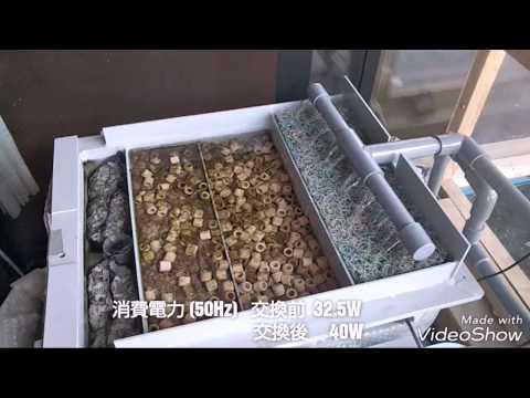錦鯉飼育  2018.9.24  飼育設備バージョンアップ