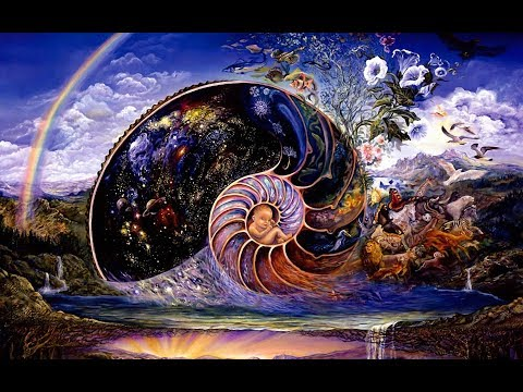 Люди это единый организм. Гармония в жизни общества и природы. (видео)