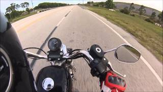 1. Harley Davidson Sportster 883 Top Speed!