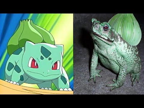 10 Pokemon That Actually Exist In Real Life
