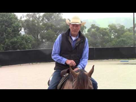 How to train your horse to do a western trail gate. A video by Roy Marchinton