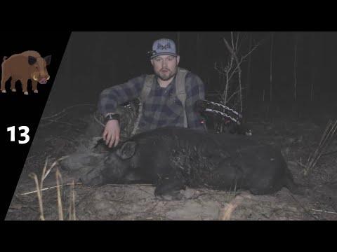 """HOG SERIES EPISODE  4! """"STALKING HOGS AT NIGHT!"""""""