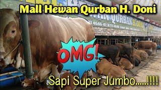 Video Mall Hewan Qurban H Doni MP3, 3GP, MP4, WEBM, AVI, FLV Agustus 2019