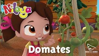 Niloya - Bölüm 5 - Domates - Yumurcak Tv