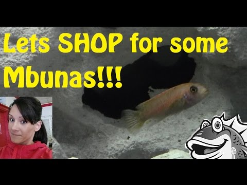how to make mbuna grow faster