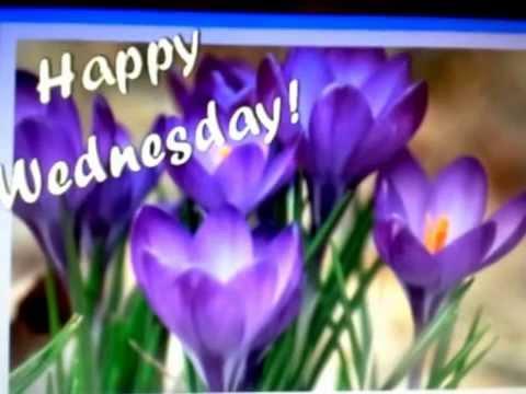 Happy Wednesday!!!