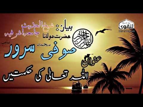 Video Allah ki hikmat bayan by sufi muhammad sarwar sahib jamia ashrafia lahore download in MP3, 3GP, MP4, WEBM, AVI, FLV January 2017