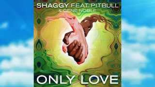 Thumbnail for Shaggy ft. Pitbull — Only Love
