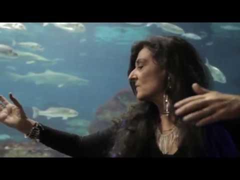 'Symbiose marine' de Nicole Coppey