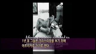 #3 브랜드 전략의 비밀 감성브랜드 (김우정) - 진정성