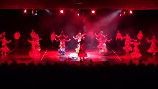 HDN Dans Ve RitimTopluluğu - Roman