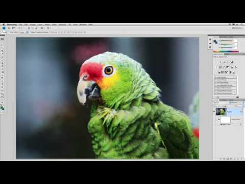 PHOTOSHOP FILTERS - Instructor Richard Harrington shows you how to combine filters with blending modes to achieve even more effects. Distributed by Tubemogul.