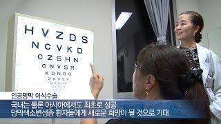 서울아산병원 인공망막 이식수술 국내 첫 성공 미리보기