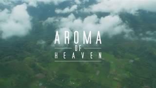 Nonton Biji Kopi Indonesia   Aroma Of Heaven  Javaroma  2  Film Subtitle Indonesia Streaming Movie Download
