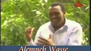 Radio Journalist  Alemneh Wasse Recalling  The Last Departure Of  Mengistu .H.M