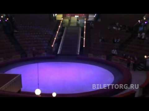 Зрительный зал цирка