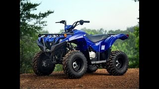 8. 2019 Yamaha Grizzly 90 For Sale In Perris, CA   Langston Motorsports