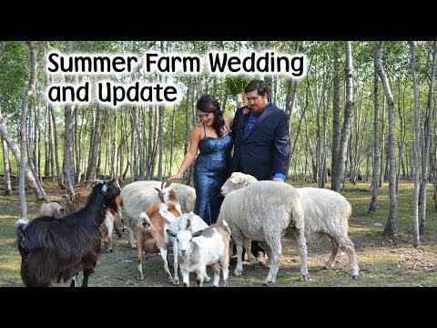 Summer Farm Wedding and Update