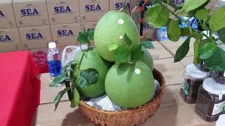 Thuận Thiên tham gia Hội chợ Thương mại, Trái cây Tết Đoan Ngọ năm 2020