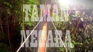Taman Negara Malaysia  City new picture : Taman Negara National Park Pahang Malaysia 2016 (Gopro)