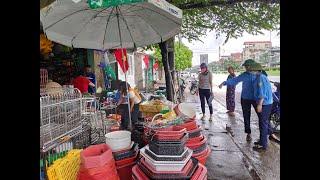 Ra quân đảm bảo ATGT, trật tự đô thị, vệ sinh môi trường chào mừng Đại hội Đảng bộ tỉnh Quảng Ninh lần thứ XV
