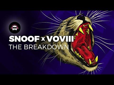 Snoof & VOVIII - The Breakdown | Ninety9Lives Release