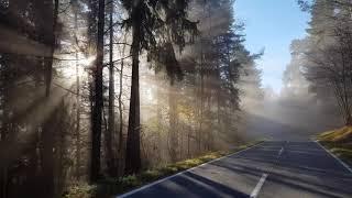 A fény játéka a ködben