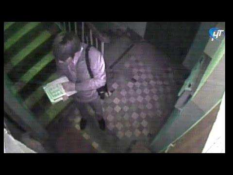 В Новгородской области участились случаи мошенничества