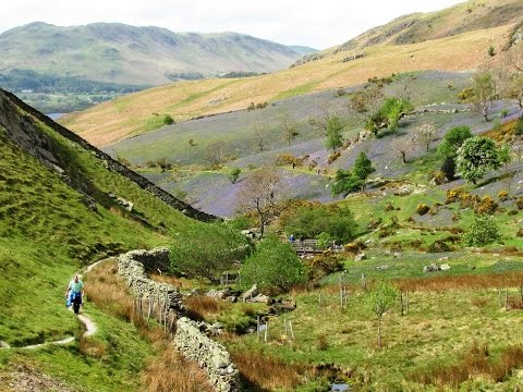 Rannerdale Knotts and the Bluebells round | cumbria  Walks