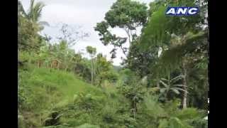 Video Tourist Destinations in Kidapawan MP3, 3GP, MP4, WEBM, AVI, FLV Desember 2017