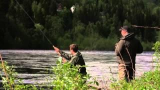 Laksefiske i Orkla 2015