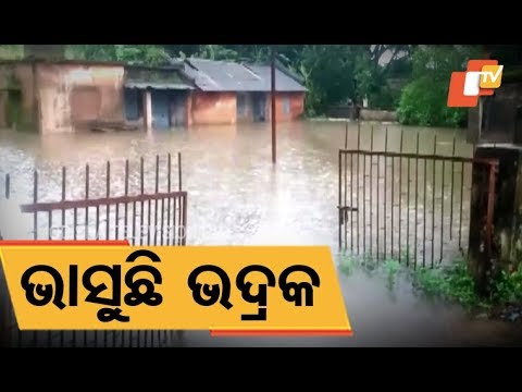 Video Flood like situation in Bhadrak following heavy rains download in MP3, 3GP, MP4, WEBM, AVI, FLV January 2017