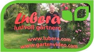 LUBERA: Lustvoll gärtnern!