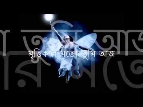 Shimul Mustapha   Akash Leena Jibanananda Das
