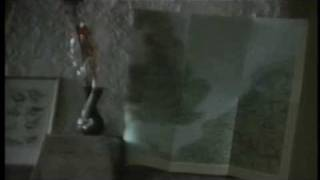 Video 03 Marabu